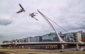Samuel Beckett Bridge with birds